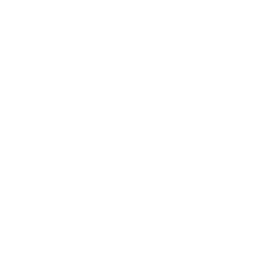 white-brush-icon